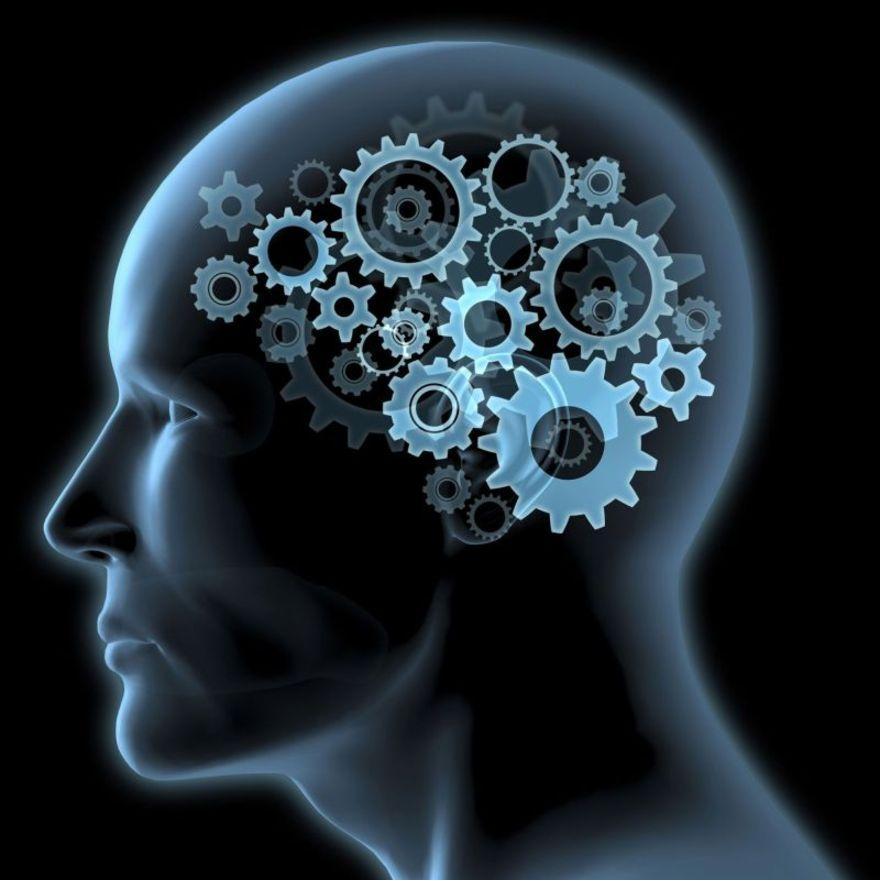 WCENTER 0REDADFGHZ - illustrazione testa cervello ingranaggi intelligenza pensiero macro - masterfile -