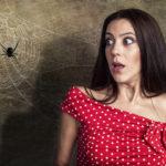 Curare la fobia dei ragni
